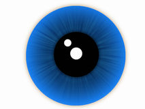 Blue eye. Of caucasian race Royalty Free Stock Photos