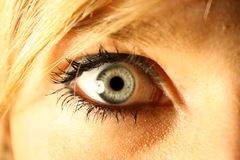 Blue eye. Blond hair girl and her beautifull blue eye Stock Photos