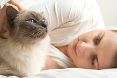 Blue eye cat with woman. Blue eyed cat with blue eyed  caucasian woman caressing it lying in white bed Royalty Free Stock Photography