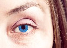 Blue eye close up Royalty Free Stock Photos