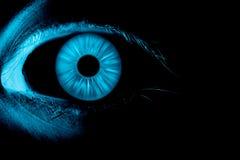 Blue eye on focus. Fluorescent blue eye on focus Stock Images