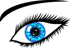 Blue Eye with lashes Royalty Free Stock Photo