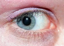 Blue Eye Macro Stock Images