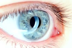 Blue eye in macro. Eye in macro,natural skin,no effects added Royalty Free Stock Images