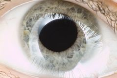 Blue eye in macro. Extreme detail Stock Photo