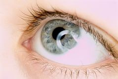 Blue eye in macro Stock Images