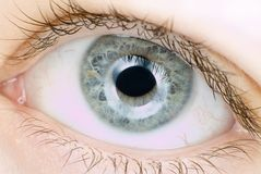 Blue eye in macro. Extreme detail Royalty Free Stock Photos