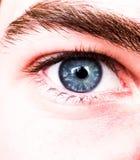 Blue eye. Macro photo of a blue eye Stock Image