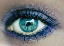 Blue Eye Makeup. Beautiful Eyes Make-up. Macro Royalty Free Stock Image