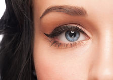 Blue eye with makeup Royalty Free Stock Photos