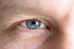 Blue eye of the man close up macro Royalty Free Stock Images