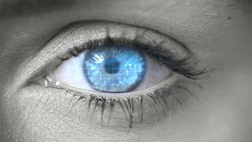 Blue eye opening