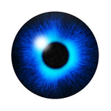 Blue eye pupil Stock Image