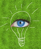 Blue eye surrounded by a drawing of a light bulb. On grass texture Stock Photo