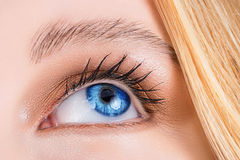Blue eye of a woman. Stock Photo