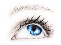 Blue eye of a woman. Stock Photography