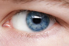 Blue eye of young man Stock Photos