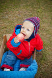 Blue-eyed baby,with apple, autumn season.8months Stock Images