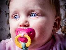 Blue-eyed Baby sucking pacifier Royalty Free Stock Photo