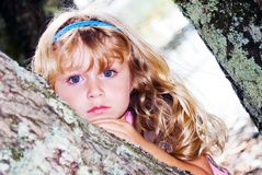 Blue-eyed Beauty/ Young Girl. Young girl posing in a tree stock image