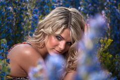 Blue-eyed blonde Royalty Free Stock Images