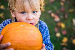 Blue eyed boy holding a pumpkin. Blue eyed two year old holding a pumpkin in New England during the fall. Striking blue eyes Stock Photo