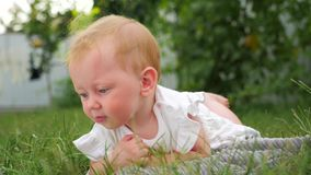 Blue eyed girl smiling outdoor. Child in summer forest. Toddler on the meadow. stock footage