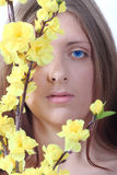 The blue-eyed girl with yellow colours. Portrait of the blue-eyed girl with yellow colours removed close up Royalty Free Stock Photos