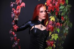 Blue Eyed Red Head Gothic Girl among colorful autumn vines.  Royalty Free Stock Photos