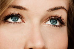 Blue eyes. Close up of a woman with blue eyes Stock Image