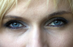 Blue eyes Stock Image