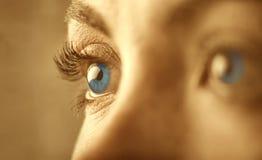 Blue eyes Stock Photography