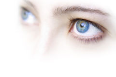 Blue Eyes. Close up view of a young woman's beautiful blue eyes Stock Photography