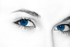 Free Blue Eyes Royalty Free Stock Image - 475046
