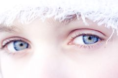 Blue eyes. Woman eyes Royalty Free Stock Images
