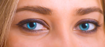 Blue eyes. Of the young caucasian girl. Macro royalty free stock photo