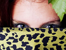 Blue eyes hidden by leopard print. Young woman hides Blue eyes hidden by leopard print Royalty Free Stock Photo