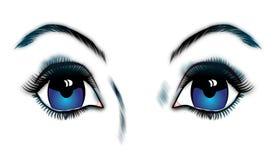 Blue eyes Stock Photo