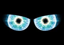 Blue Eyes On Black Background Stock Image