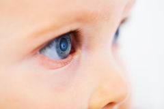 Blue eyes. Profile of a child with deep blue eyes Stock Photo