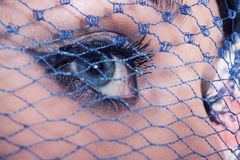Blue eyes of the young woman. Beautiful blue eyes of the young woman hidden behind a veil of macro Royalty Free Stock Photos