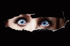 Blue eyes of a young woman peeping royalty free stock images
