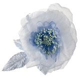 Blue fabric flower Royalty Free Stock Photos