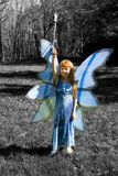 Blue Fairy Stock Images