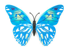Blue fake butterfly isolated Stock Image