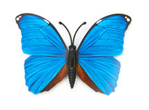 Blue fake butterfly isolated Royalty Free Stock Images