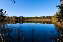 Blue fall pond with yellow leafs on trees. Blue fall pond with reflection, yellow leafs on trees, during day Stock Image