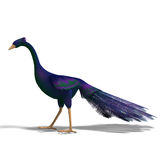 Blue fantasy bird with beautiful feathers Royalty Free Stock Photography