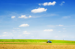 Blue farm tractor. With a plow in a farm field royalty free stock image