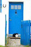 Blue farmhouse door, cat in front Royalty Free Stock Images